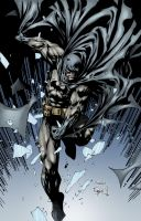 Batman in Color 2 by ernestj23