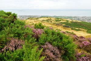 From Arthur's Seat 1 by wildplaces