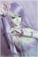 Lavender Lullaby by sherimi