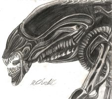 Xenomorph Queen by unknownguyver81
