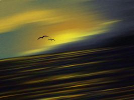 Sun, Sea and Gulls by Wooded-Wolf