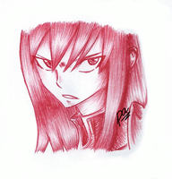 Titania Erza (ballpoint pen) by passion00