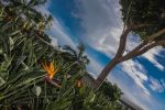 Beauty at Pearl Harbour by StephCarmel