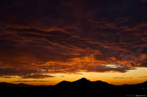 december sunset 2 by amilehi