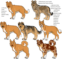 16-Way Mixed Breeds, 2 by Leonca