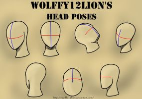 Head Poses by wolffy12lion