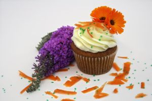Carrot Cake Cupcake by FightTheAssimilation