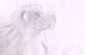 Lion Leo by Zumay-Is-Love