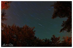 First Attempt Star Trails by jaydoncabe