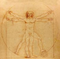 ALBUS 2010 - Vitruvian Man by firefoxcentral