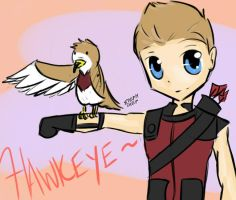 Hawkeye Hawk Trainer by StephDiep