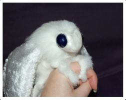 Tiffa the Plush Poodle Moth - Being held by Sovriin