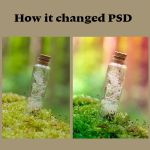 How I changed: It's magic by Pamba