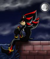 Shadow at night by VegetasLittleLover