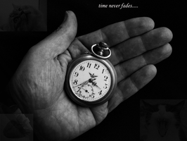 time never fades by spikelover7