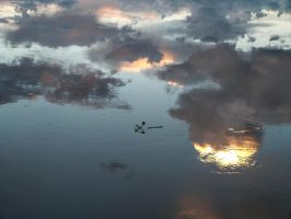 Sky reflection in water stock I by StarsColdNight