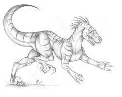 raptor sketch :: the hunt:: by Suenta-DeathGod