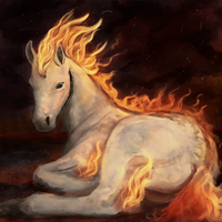 Ponyta by Noctualis