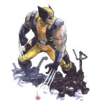WOLVERINE RUBBLE by deemonproductions