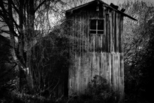 Abandoned Place by PeterCraver