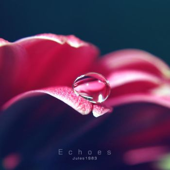 Echoes by Jules1983