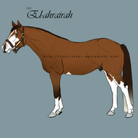 El-ahrairah by wideturn