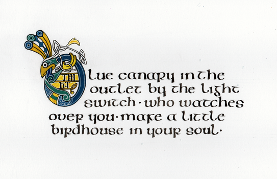 Illumination: Birdhouse In Your Soul by SynCallio
