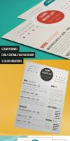 Modern-and-clean-resume by bhertzel