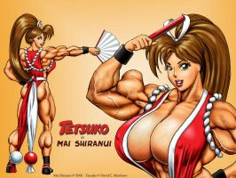"Tetsuko as ""Mai Shiranui"" by DavidCMatthews"