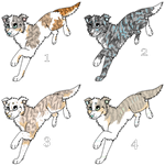 Canine adoptables | Border Collies | OPEN by Aussienka