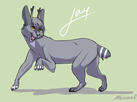 Jay CCP by 4erti4to