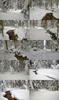 Snowy Woods Stock Package by Burtn