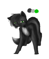 (Black Leaves) Hollypaw Ref. by Amerikat