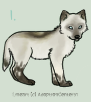 Litter 3 by Animal-Canine-Adopts