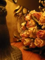 bouquet of  dried roses - soft by TaitRochelle