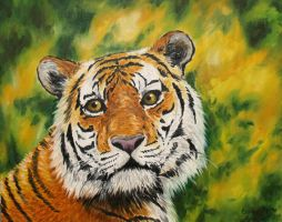 Tiger 2 by Woolf20