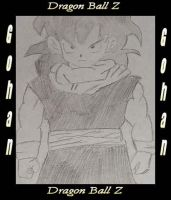 Gohan of Dragon Ball Z by kon-el