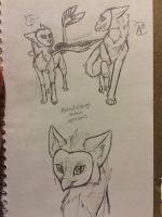 OwlFox Sketches  by AshesAndWings