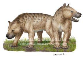 Megistotherium osteothlastes by BrokenMachine86