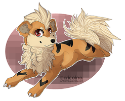 growlithe by Chrizka