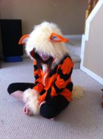 Arcanine hoodie front view by Myrad