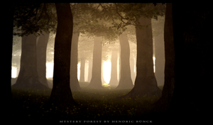 Mystery Forest by Hendricbuenck