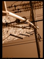 TelePole Series 5 - Barred by princepoo