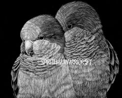 Scratch Art - Quakers by XSpiritWarriorX