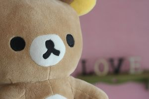 bear luv by silverlife