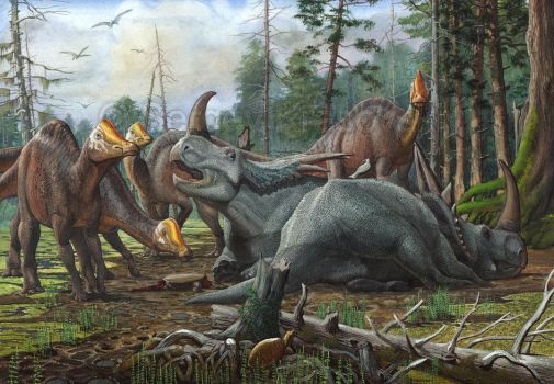 Rubeosaurus and young Hypacrosaurus by atrox1