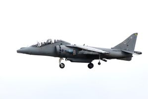 Harrier in the hover by pma27