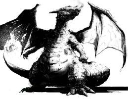 Charizard Black and White by LindseyWArt