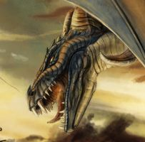 DRAGON ATTACK Details by soys