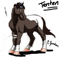 Tenten-pony doodle: ptitukyo by WSTopDeck